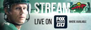 2017_Koivu_Stream the Wild FSGO  300x100