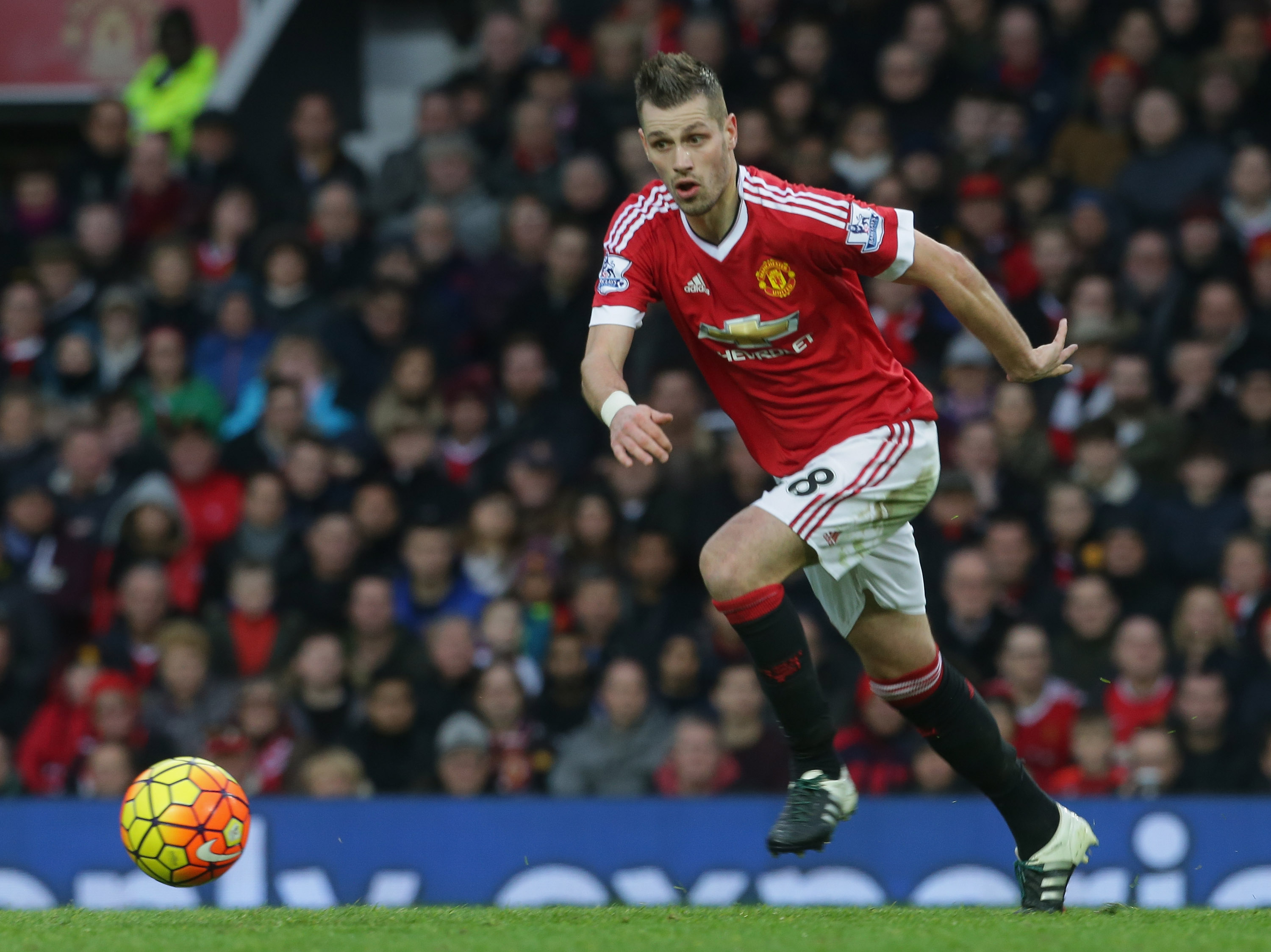 Manchester United reject £19 million Everton bid for Morgan Schneiderlin