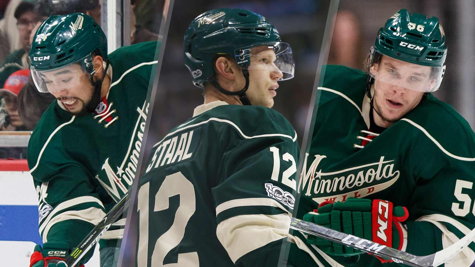 Split-PI-North-Wild-Dumba-Staal-Haula-expansion-061917