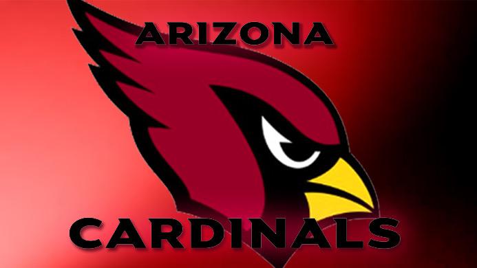 PI-NFL-Cardinals-Generic-Team-122013