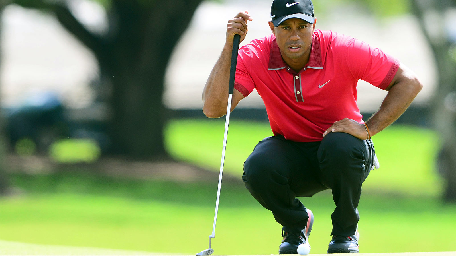 an overview of the media exposure on tiger woods an american golf player 'hillbilly elegy' recalls a childhood where poverty was 'the family tradition' jd vance grew up in a rust belt town in ohio, in a family from the hills of eastern kentucky his new memoir details the social isolation, poverty and addiction that afflict poor white communities.